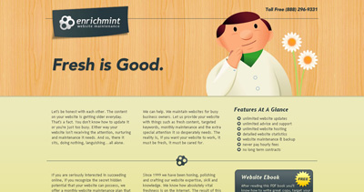 Enrichmint Website Screenshot