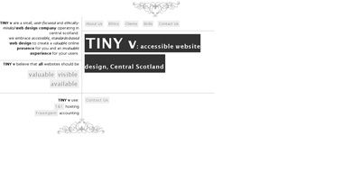 TINY v Website Screenshot