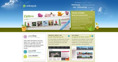 onlinepuls Website Screenshot