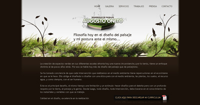 Augusto Oneto Website Screenshot