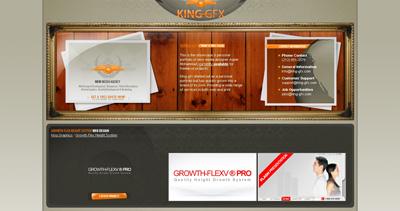 King-GFX Website Screenshot