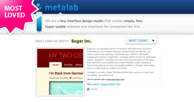 MetaLab Website Screenshot
