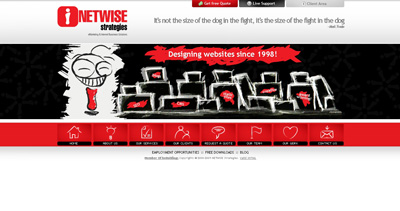 NETWiSE Strategies Website Screenshot