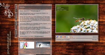 picturelounge.at Website Screenshot