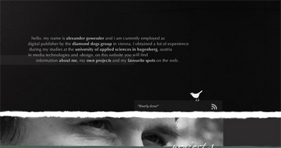 Alexander Gewessler Website Screenshot