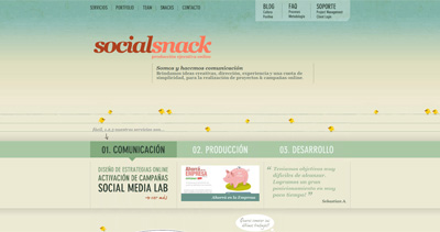 SocialSnack Website Screenshot