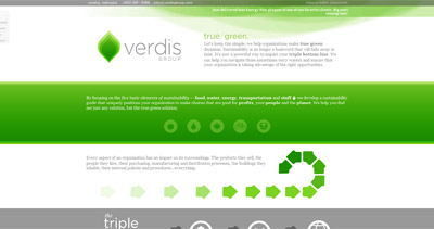 Verdis Group Website Screenshot