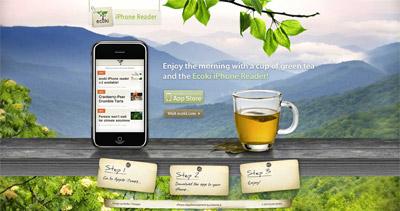 Ecoki Website Screenshot