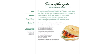 Sonny Langer Website Screenshot