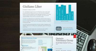 Giuliano Liker Website Screenshot
