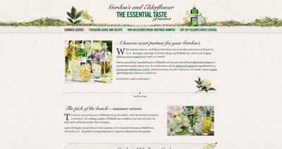 The Essential Taste of Summer Website Screenshot