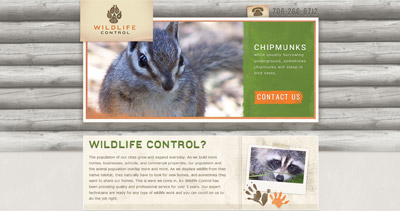 North Georgia Wildlife Control Website Screenshot