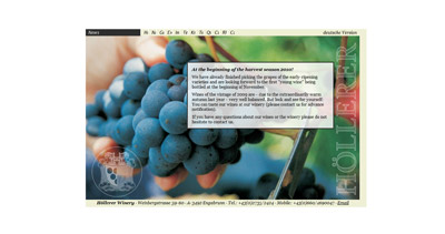 Höllerer Winery Website Screenshot