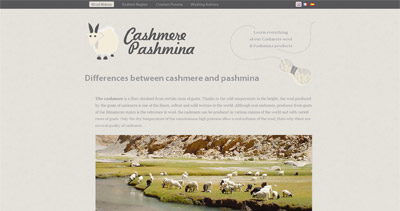 Cashmere Pashmina Website Screenshot
