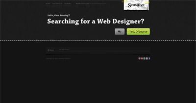 Sensitive Designs Website Screenshot