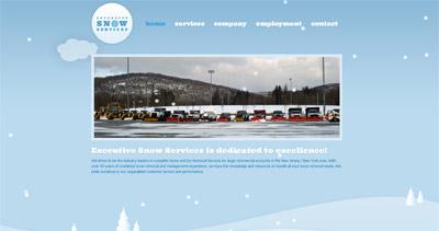 Executive Snow Services Website Screenshot
