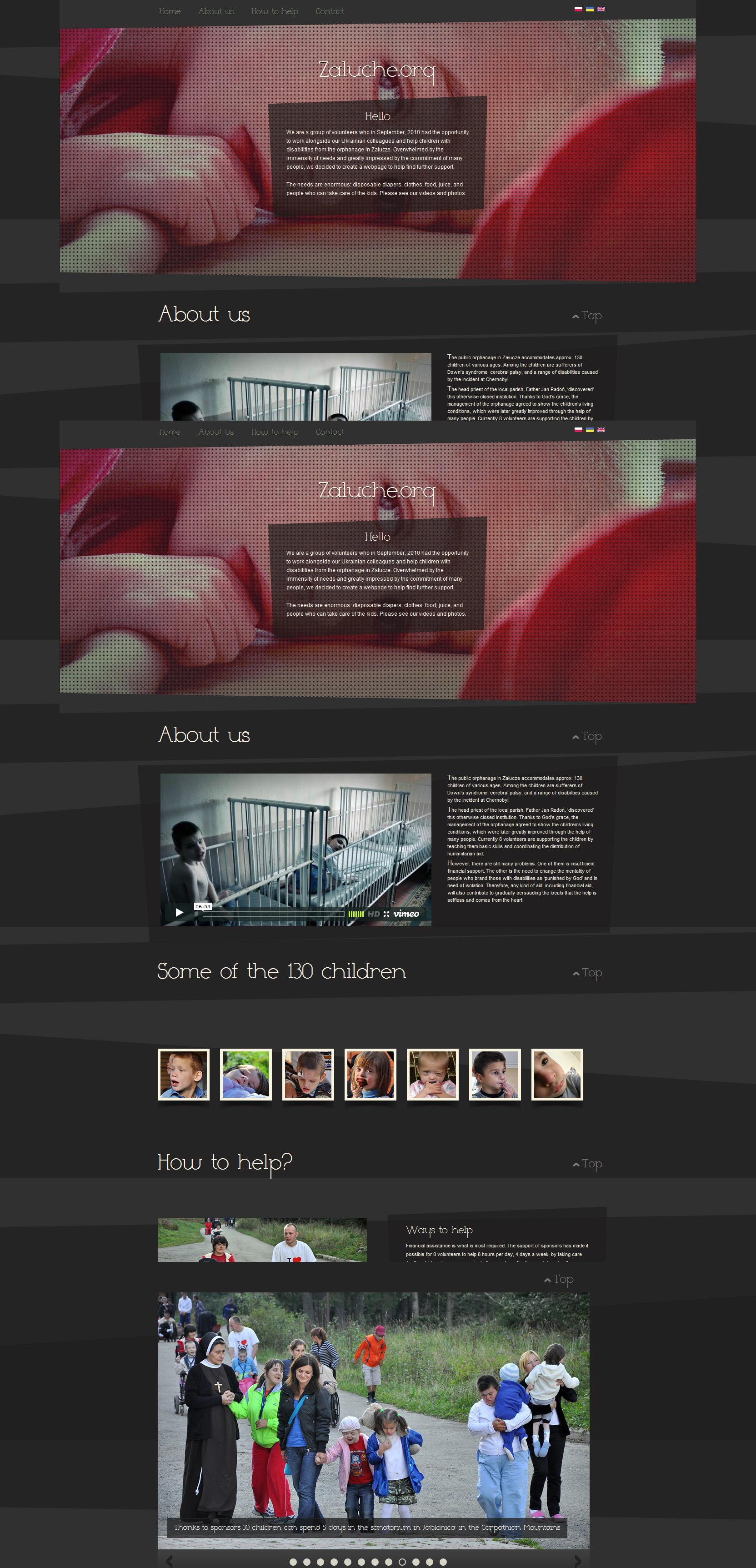 Zaluche Website Screenshot
