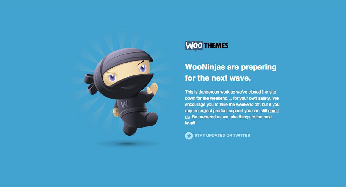 WooThemes Website Screenshot