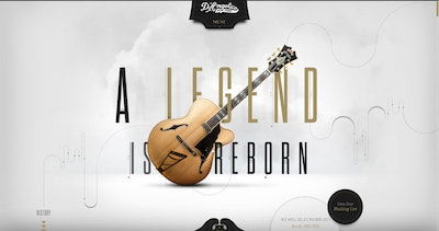 D'Angelico Guitars Thumbnail Preview