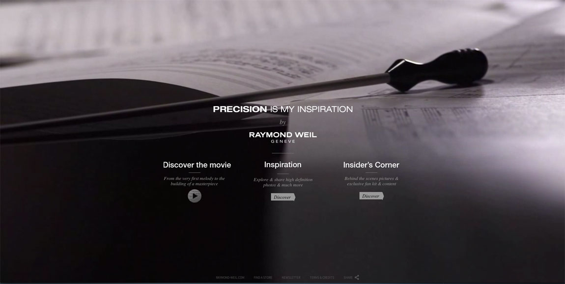 Precision is my Inspiration Website Screenshot
