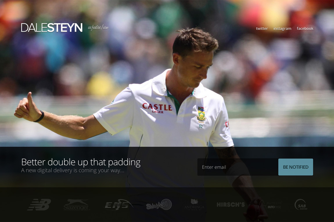 Dale Steyn Website Screenshot