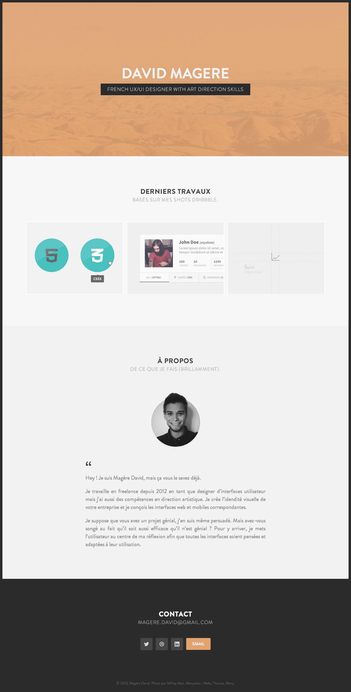 Magere David Website Screenshot