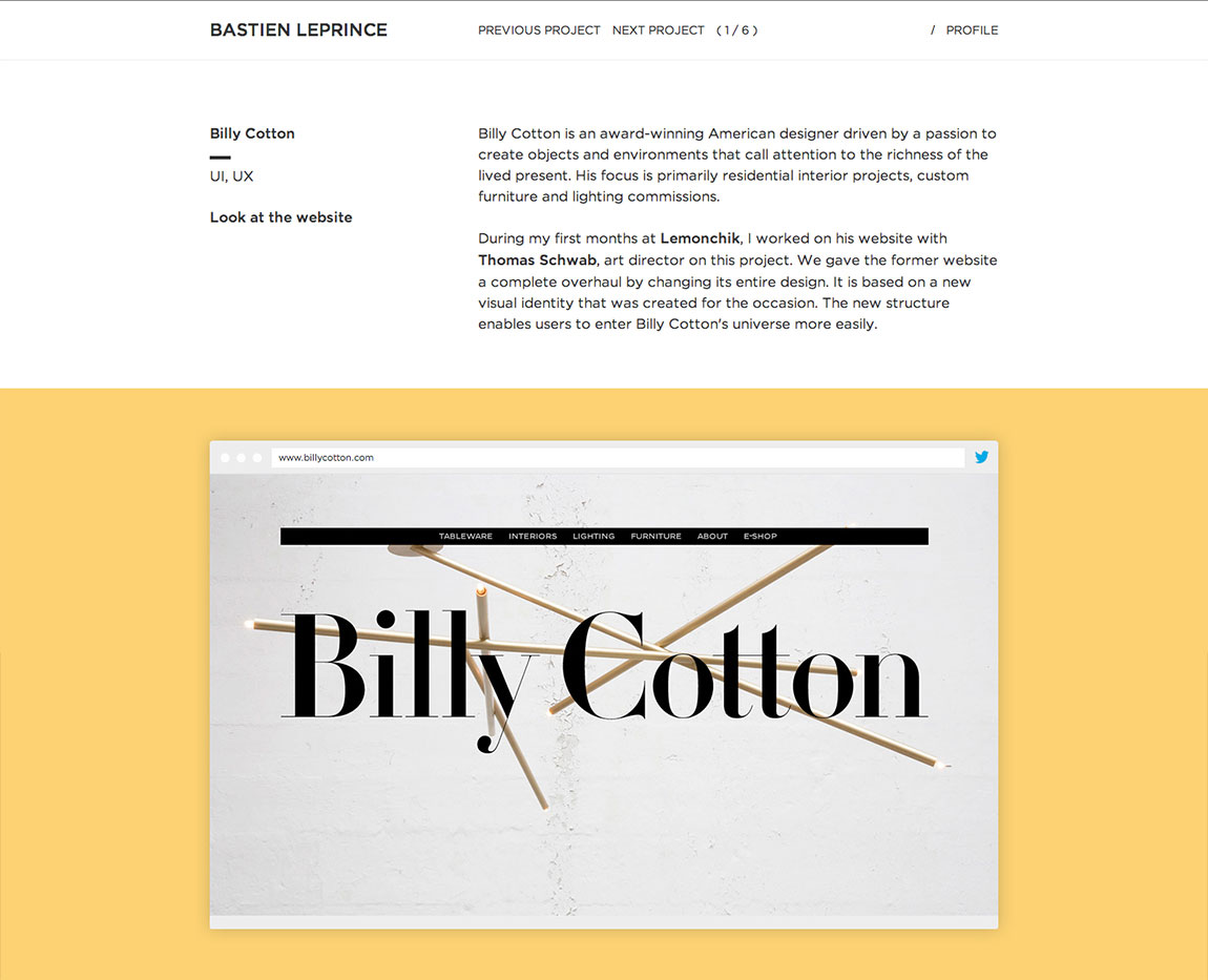 Bastien Leprince Website Screenshot