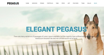 Pegasus Thumbnail Preview