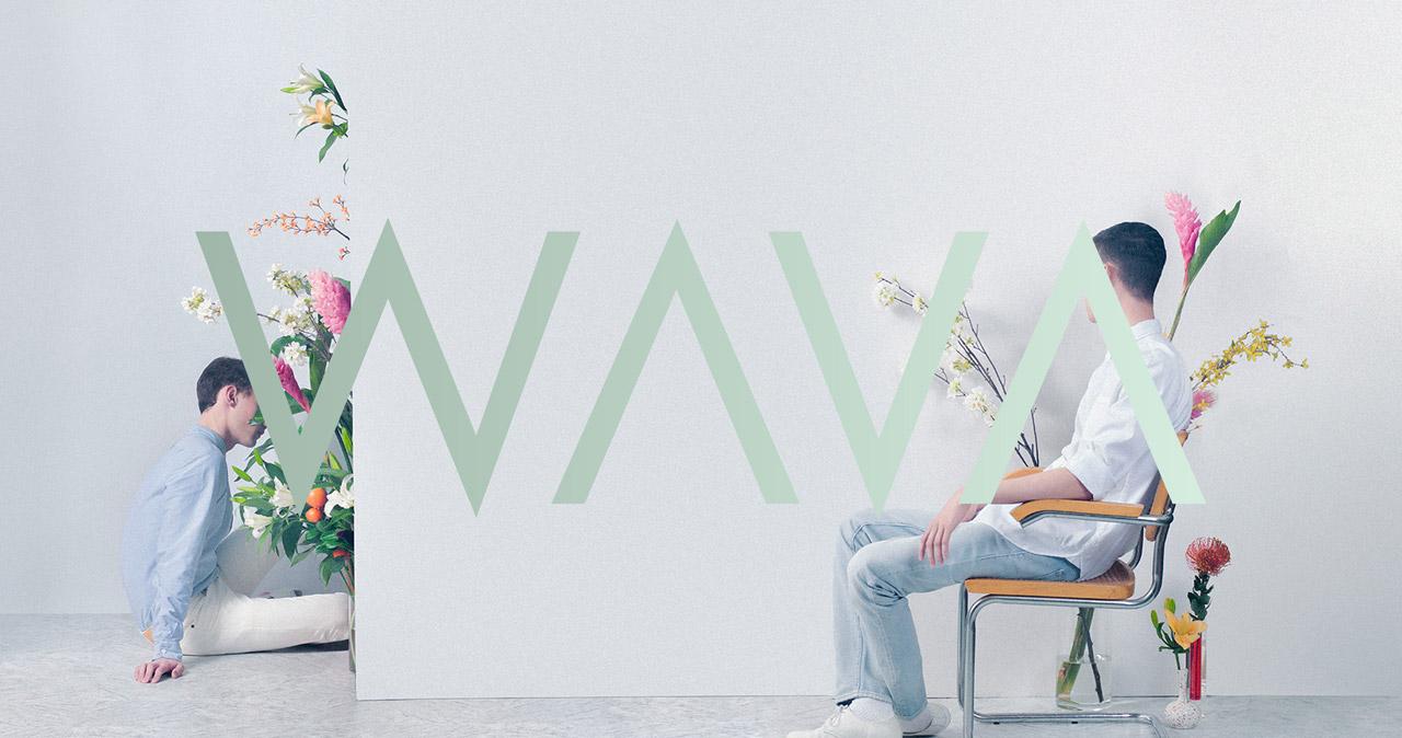 We Are Visual Animals Website Screenshot
