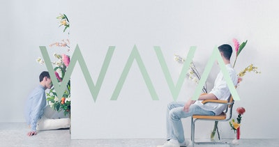 We Are Visual Animals Thumbnail Preview