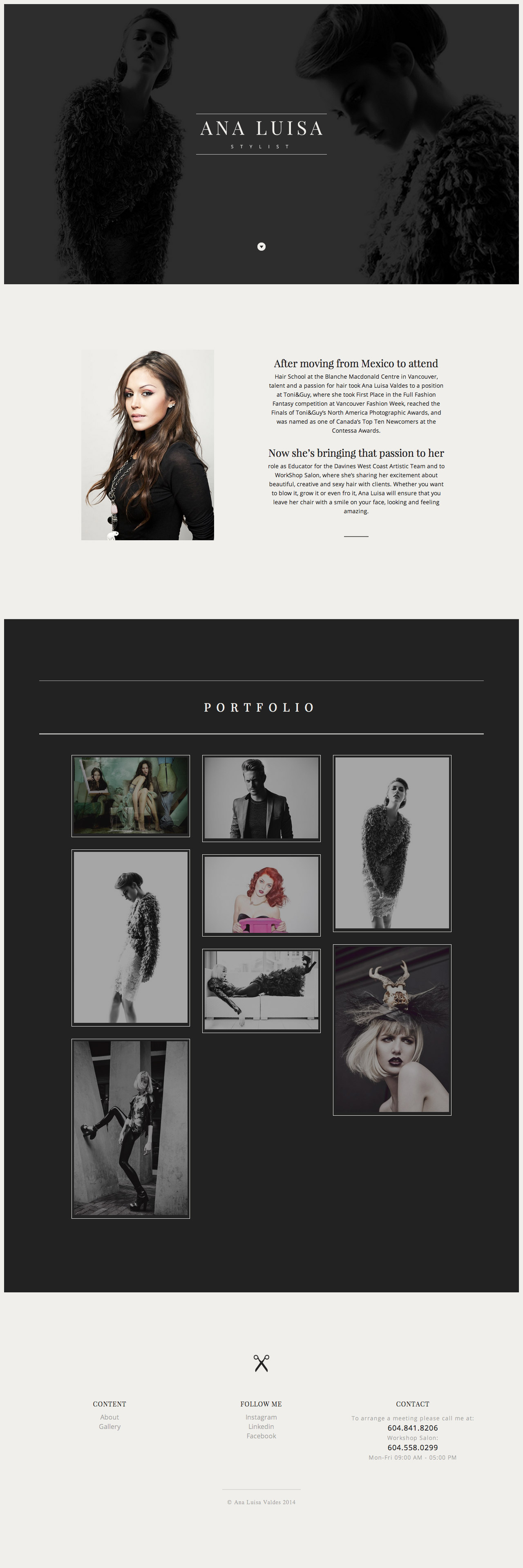Ana Luisa Website Screenshot