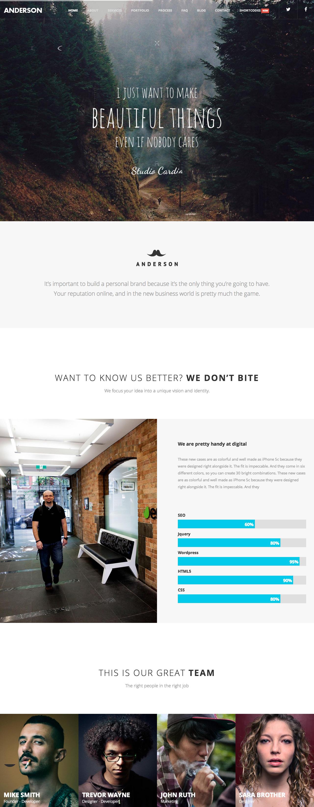 Anderson Website Screenshot