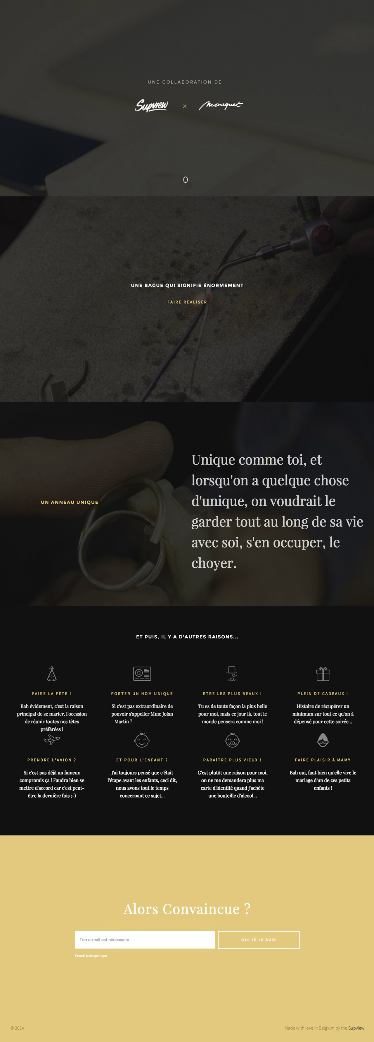 Online Proposal of François Martin Website Screenshot