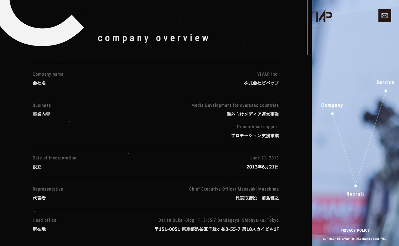 VIVAP Inc. Website Screenshot