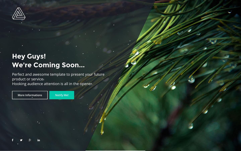 PHLY Website Screenshot