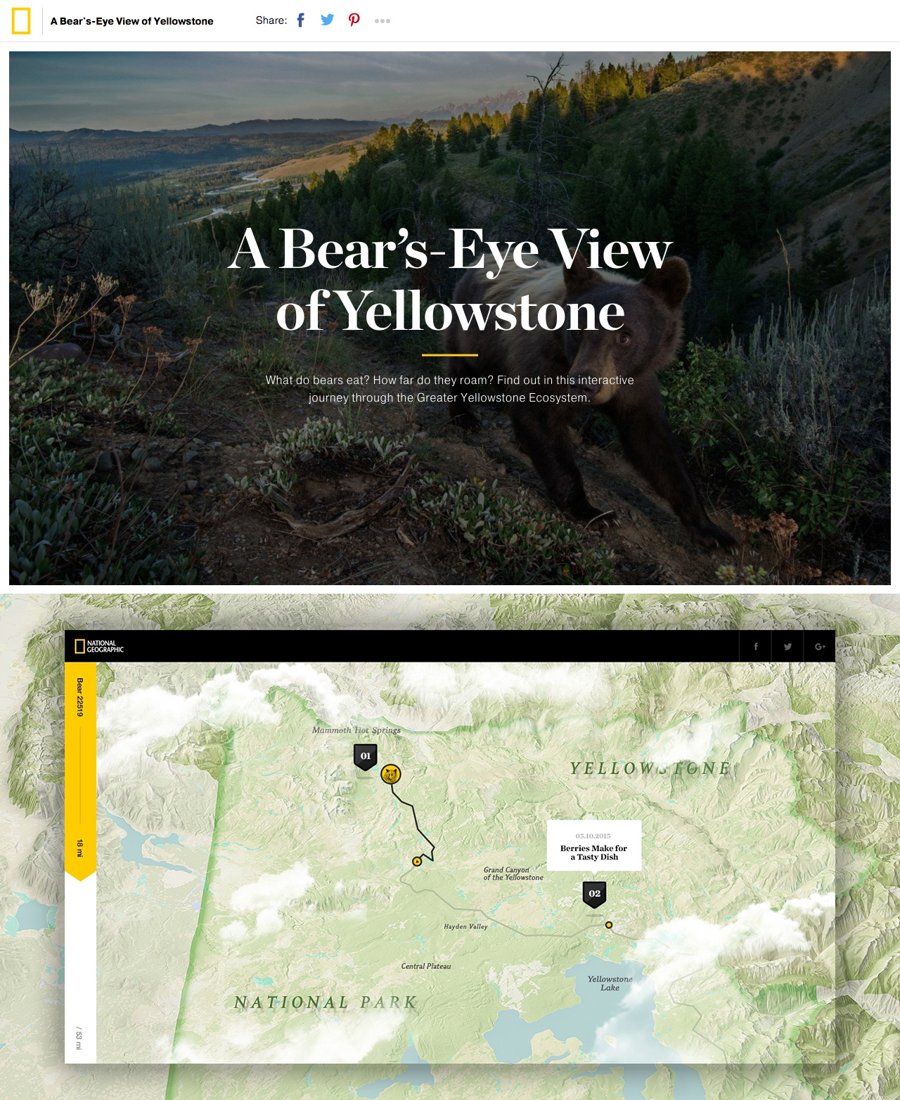 A Bear's-Eye View of Yellowstone Website Screenshot