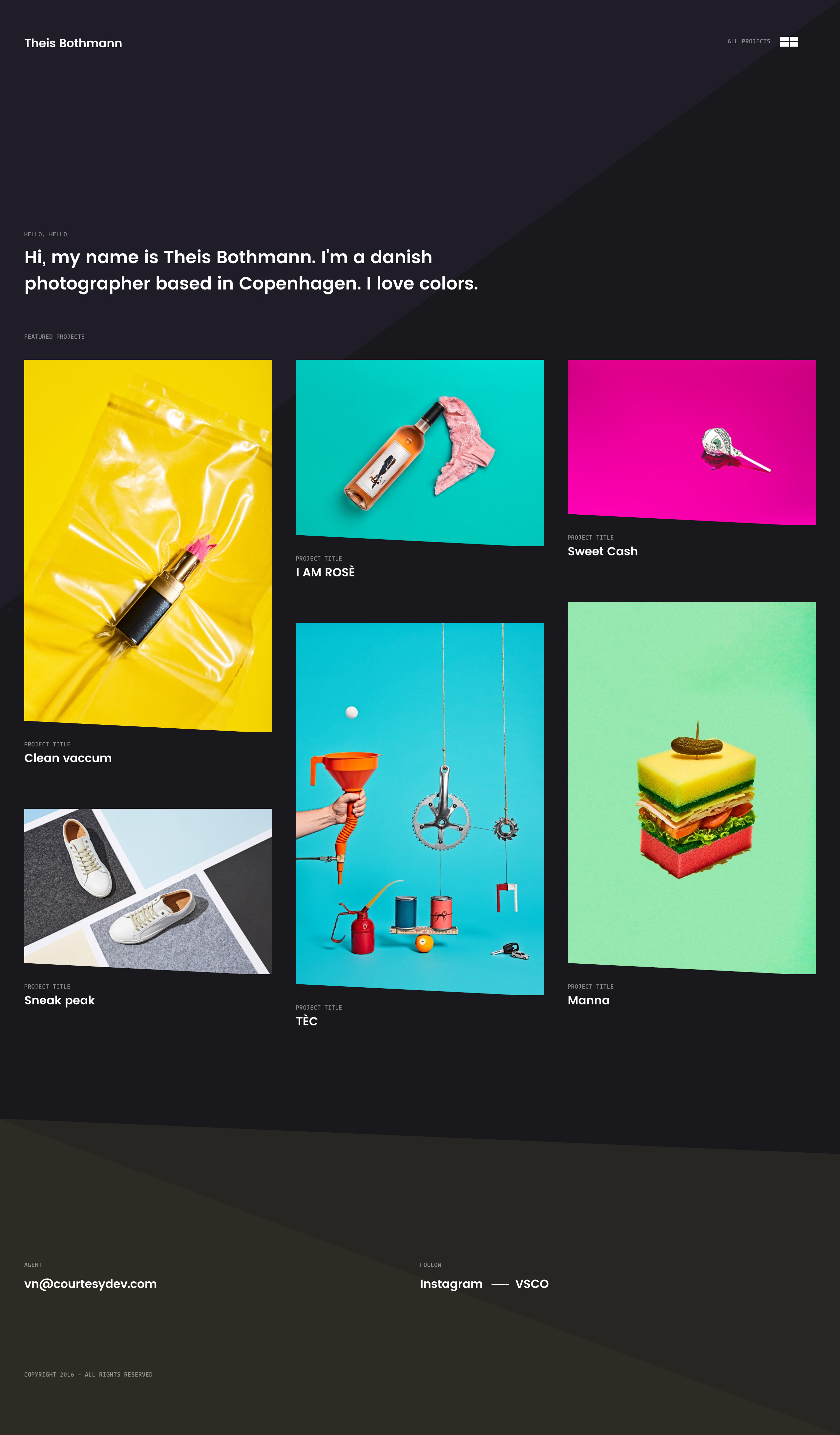 Theis Bothmann Website Screenshot