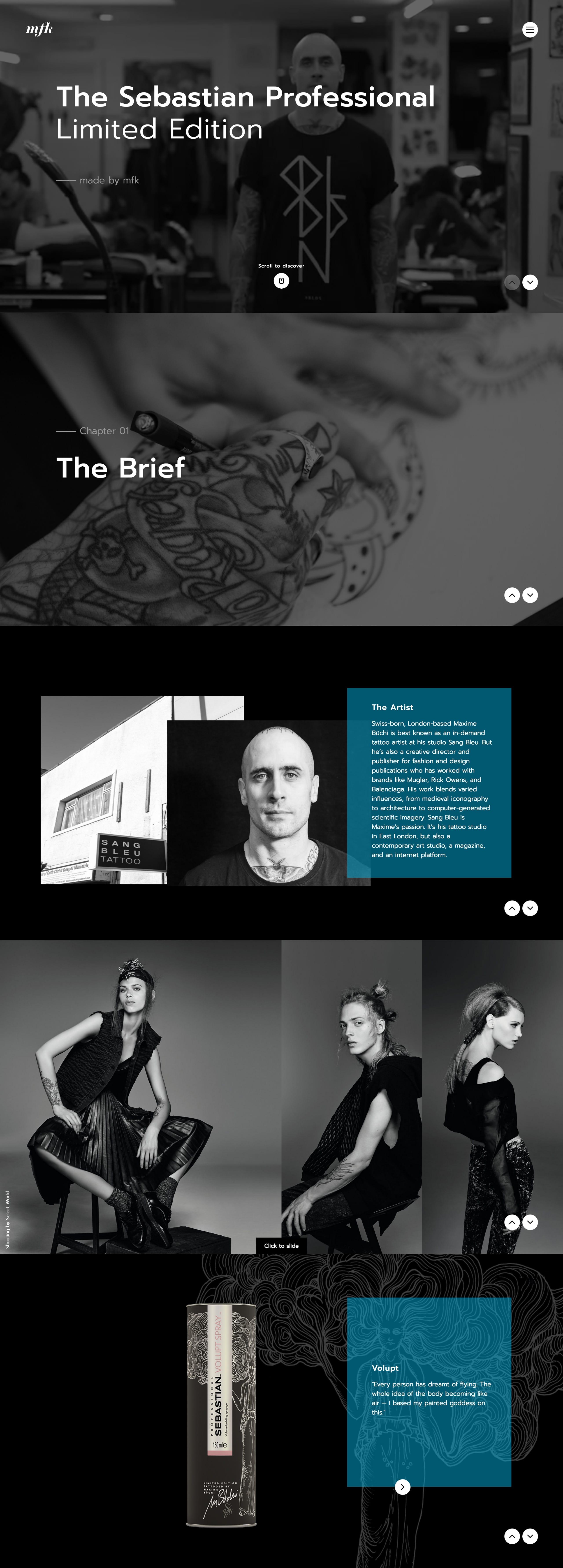 Sebastian Professional Limited Edition Website Screenshot