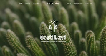 How to create a long-scrolling Landing Page using Squarespace [video]
