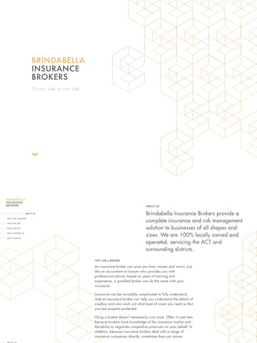 Brindabella Insurance Brokers Thumbnail Preview