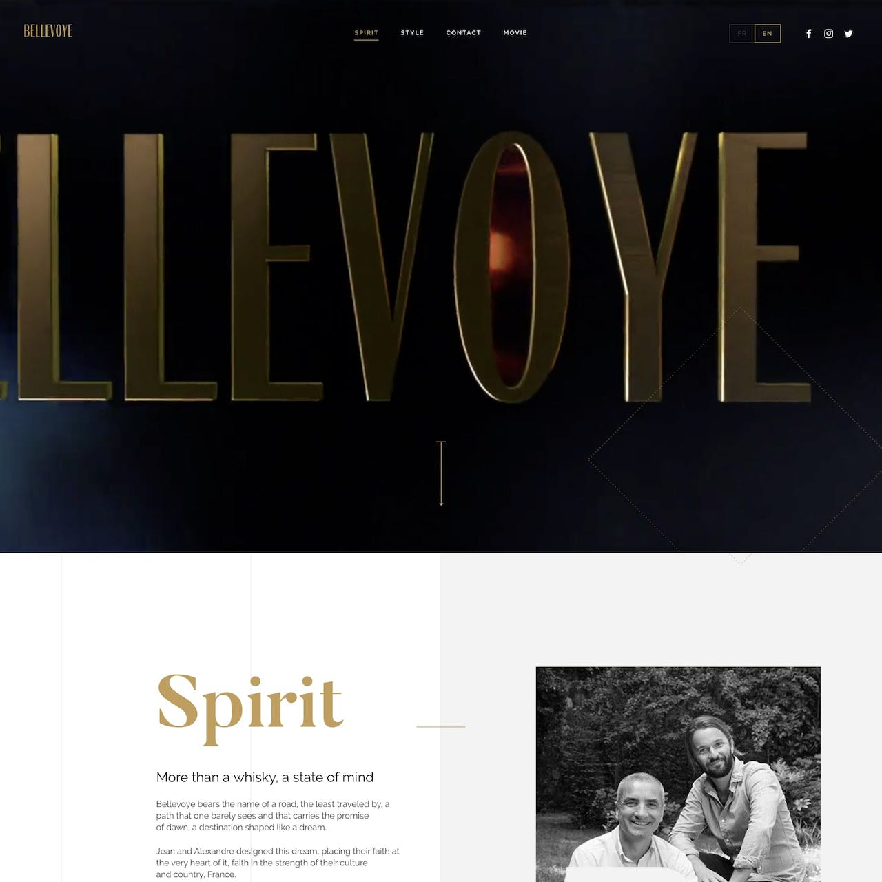 Bellevoye Website Screenshot
