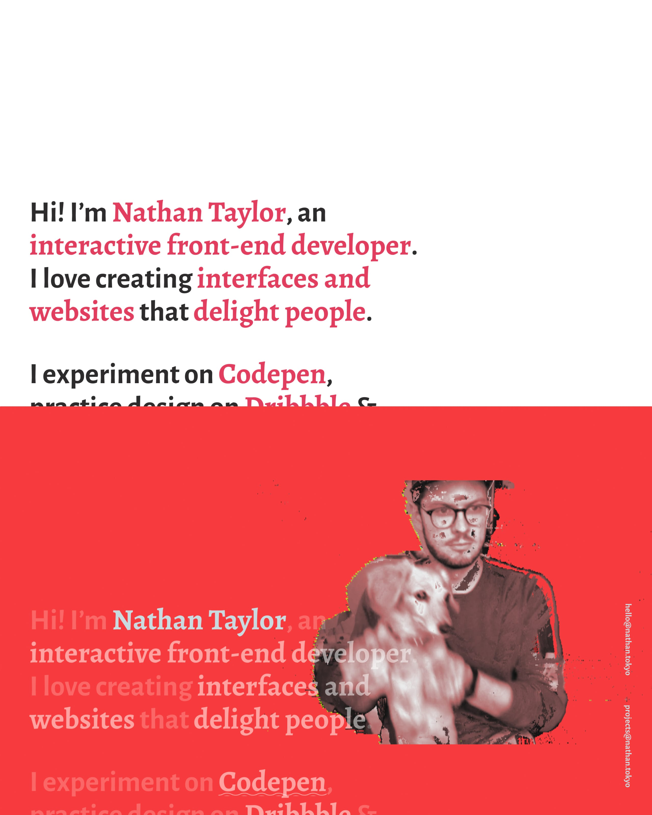 Nathan Taylor Website Screenshot