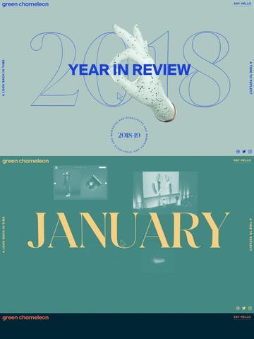 Green Chameleon 2018 Year in Review Thumbnail Preview