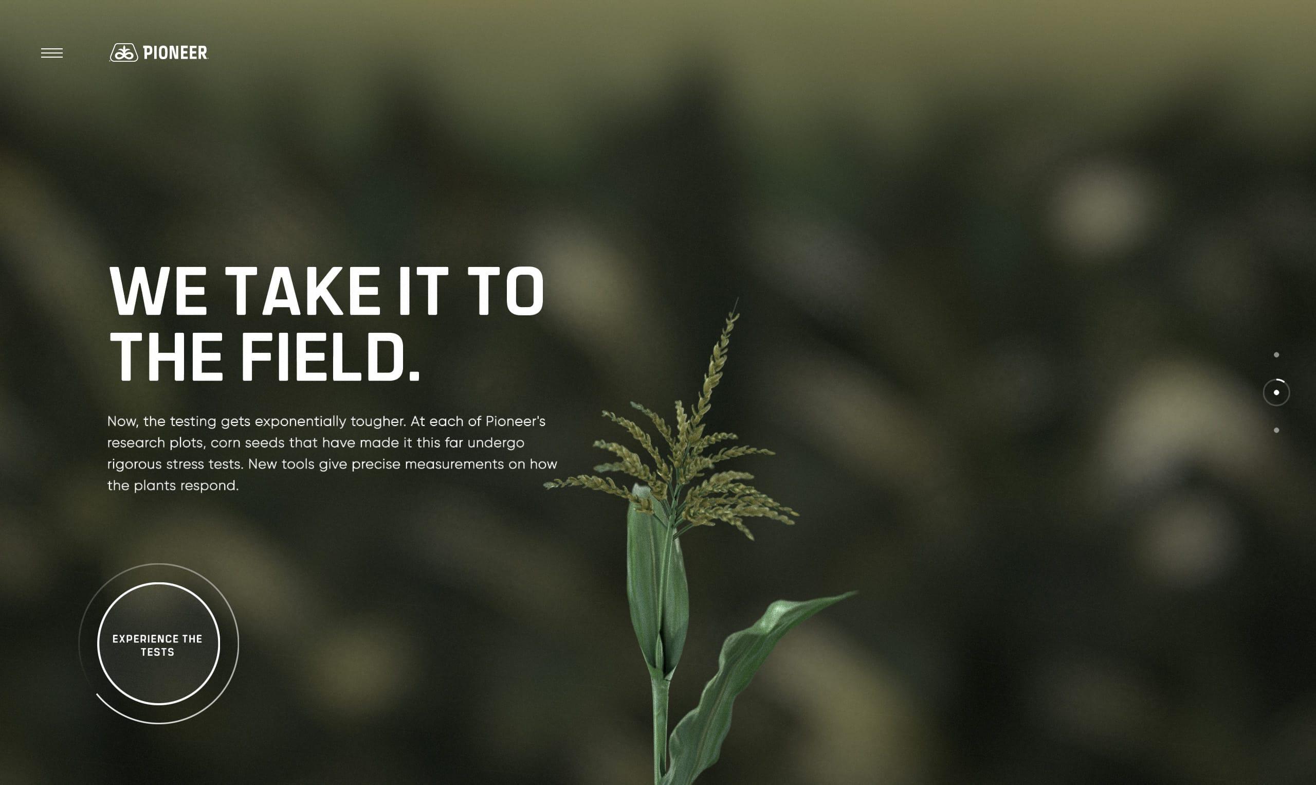 Pioneer Website Screenshot