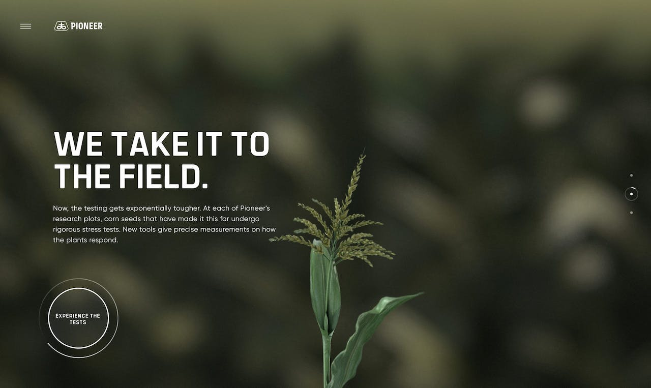 Pioneer Website Screenshot