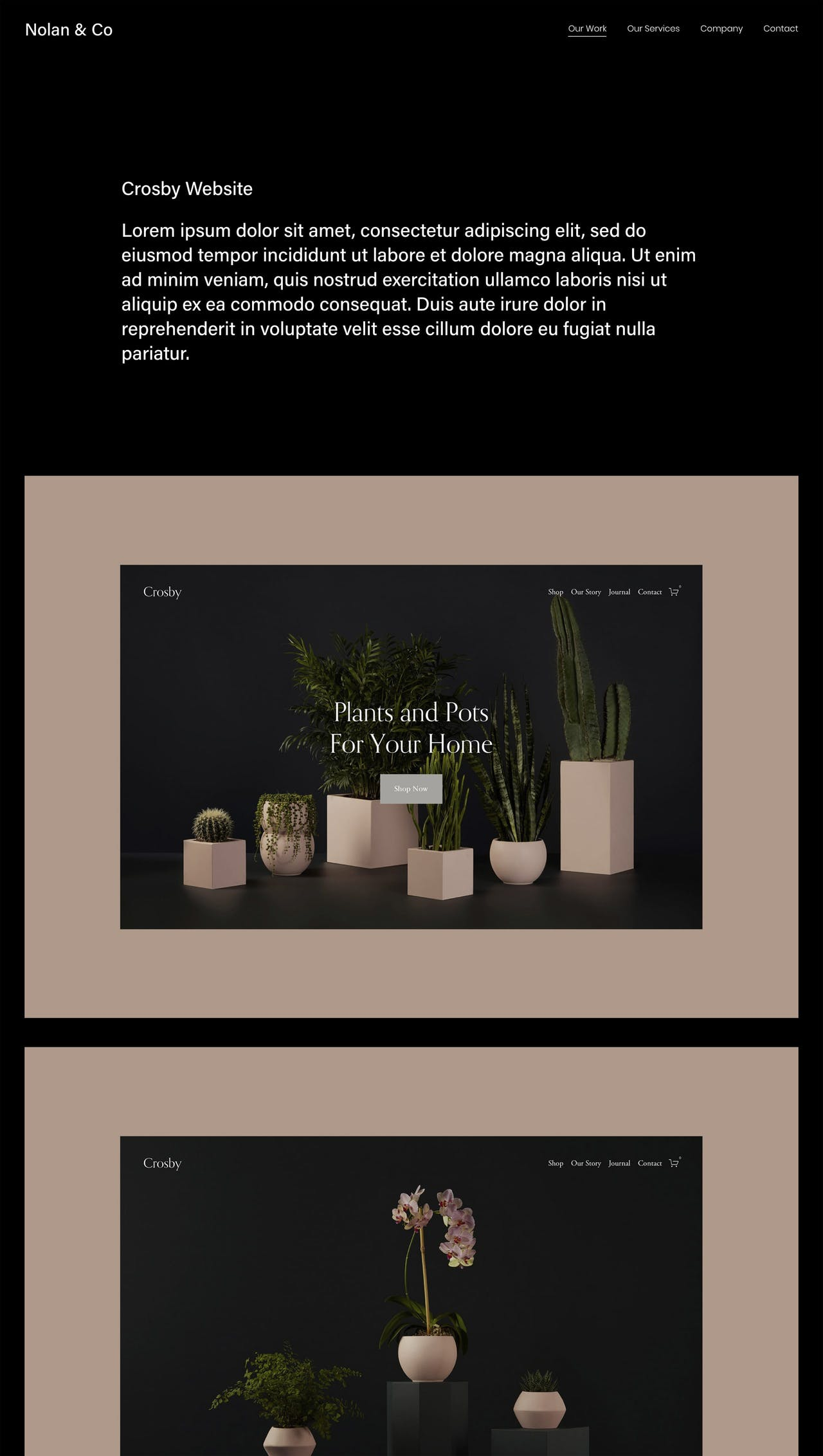 Squarespace Nolan Template - Portfolio Preview Screenshot