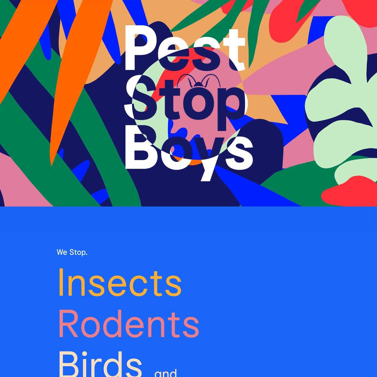 Pest Stop Boys Website Screenshot