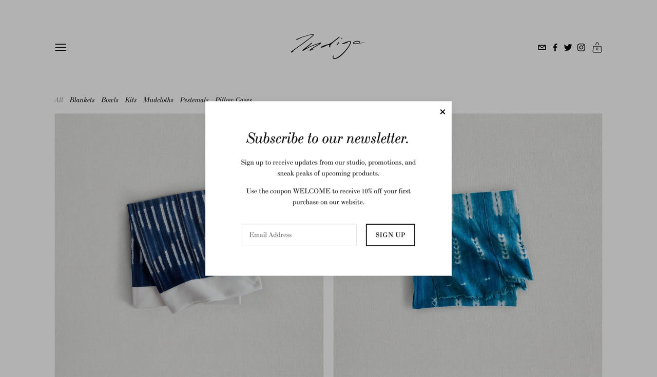 Squarespace pop-up example with coupon promo Screenshot