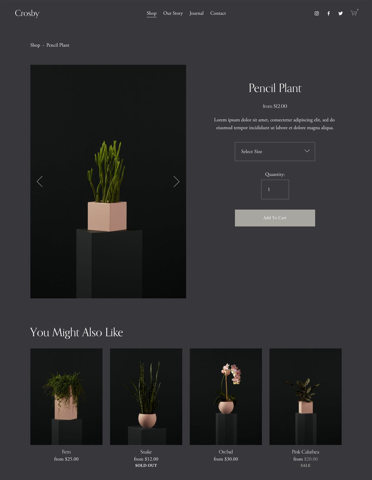 Squarespace Crosby Template - Product Page Preview Screenshot