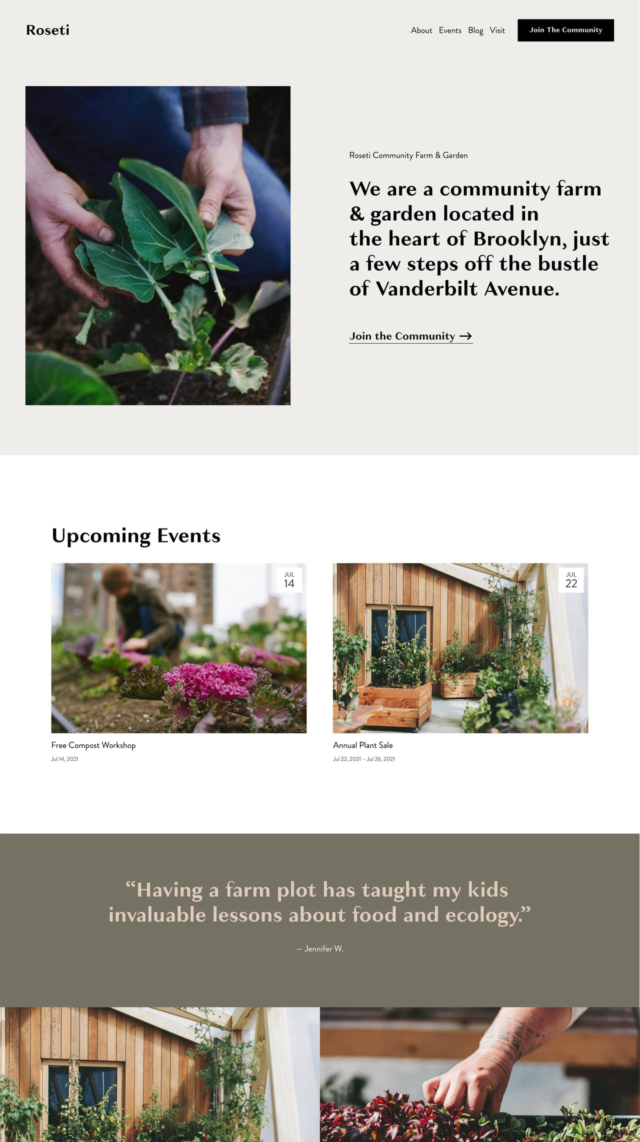 Squarespace Roseti Template - Home Preview Screenshot